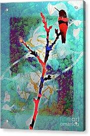 Dual Roses Acrylic Print by Robert Ball