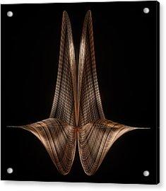 Dual Shell Acrylic Print by Thomas Helzle