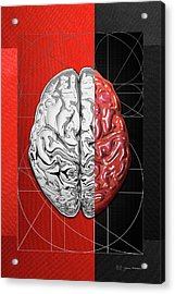 Dualities - Half-silver Human Brain On Red And Black Canvas Acrylic Print