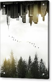 Duality Acrylic Print by Nicklas Gustafsson