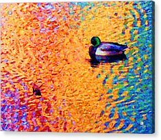 Duck A L'orange Acrylic Print