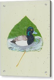 Duck On Pond #2 Acrylic Print by Ralph Root
