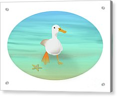 Duck Paddling At The Seaside Acrylic Print