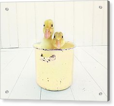 Acrylic Print featuring the photograph Duck Soup - Yellow Version by Amy Tyler
