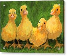 Fuzzy Duckies Acrylic Print by David Burgess