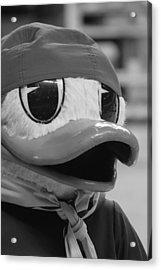 Ducking Around Acrylic Print by Laddie Halupa