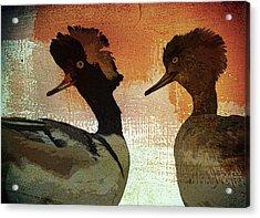 Duckology Acrylic Print