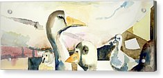 Ducks And Geese Acrylic Print