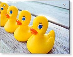 Ducks In A Row Acrylic Print by Maria Dryfhout