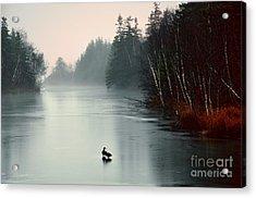 Ducks On A Frozen Pond Acrylic Print