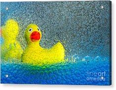 Ducks In The Tub By Kaye Menner Acrylic Print by Kaye Menner