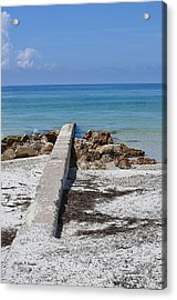 Acrylic Print featuring the photograph Due South by John Knapko