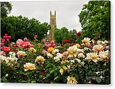 Duke Chapel And Roses Acrylic Print