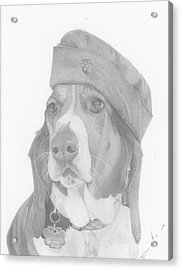 Duke Dog Drawing Acrylic Print