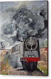 Duke Of Gloucester Acrylic Print by Carole Robins