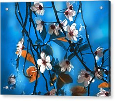Dulce Primavera Acrylic Print by Alfonso Garcia