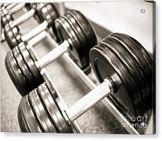 Dumbbell Weights On A Rack Acrylic Print by Paul Velgos
