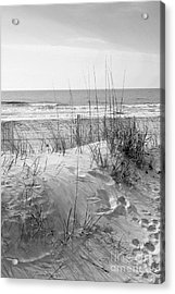 Dune - Black And White Acrylic Print