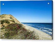 Dune Cliffs And Beach Acrylic Print by John Greim