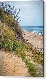 Acrylic Print featuring the photograph Dune by Kendall McKernon
