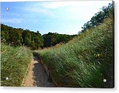 Dune Path At Laketown Acrylic Print
