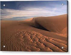 Acrylic Print featuring the photograph Dune Pleasures by Al Swasey