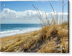Dunes At Plum Island Acrylic Print