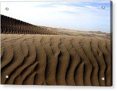 Dunes Of Alaska Acrylic Print by Anthony Jones