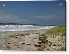 Dunes On Long Island Acrylic Print by Dennis Curry