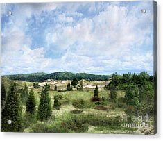 Dunescape Preserved Forever Acrylic Print by Kathi Mirto