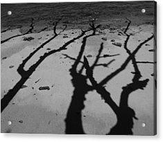 Dunk Island Australia 174 Acrylic Print by Per Lidvall