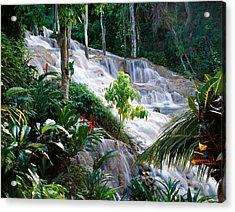 Dunn's River Falls Jamaica Acrylic Print