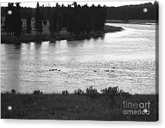 Dusk At The Yellowstone River Acrylic Print by Susan Chandler