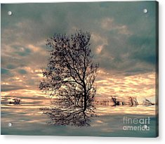 Acrylic Print featuring the photograph Dusk by Elfriede Fulda