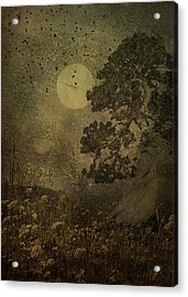Dusk Acrylic Print by Jeff Burgess