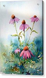 Dusky Morn Acrylic Print