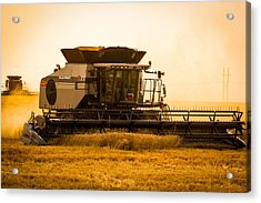 Dusty Harvest Acrylic Print