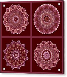 Dusty Rose Mandala Fractal Set Acrylic Print
