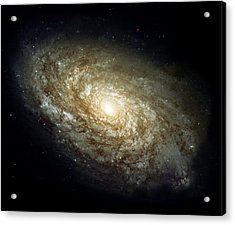 Dusty Spiral Galaxy  Acrylic Print by Hubble Space Telescope