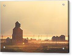Dusty Straw Acrylic Print by Todd Klassy