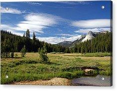 Acrylic Print featuring the digital art Dusy Meadow by Visual Artist Frank Bonilla