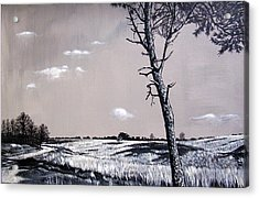 Dutch Heathland Acrylic Print by Arie Van der Wijst