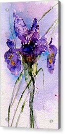 Dutch Iris Acrylic Print