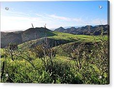 Acrylic Print featuring the photograph Dynamic California Landscape by Matt Harang