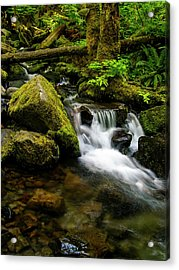 Eagle Creek Cascade Acrylic Print
