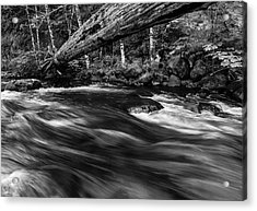 Eagle Creek  Acrylic Print