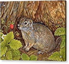 Eagle Creek Wild Strawberry Ground Squirrel Acrylic Print by Ditz