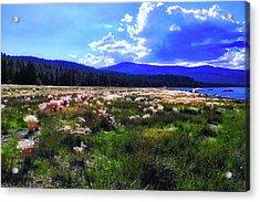 Eagle Lake Afternoon Acrylic Print