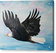 Eagle On A Mission      11 Acrylic Print
