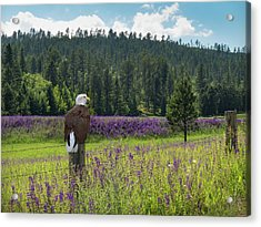 Acrylic Print featuring the photograph Eagle On Fence Post by Patti Deters